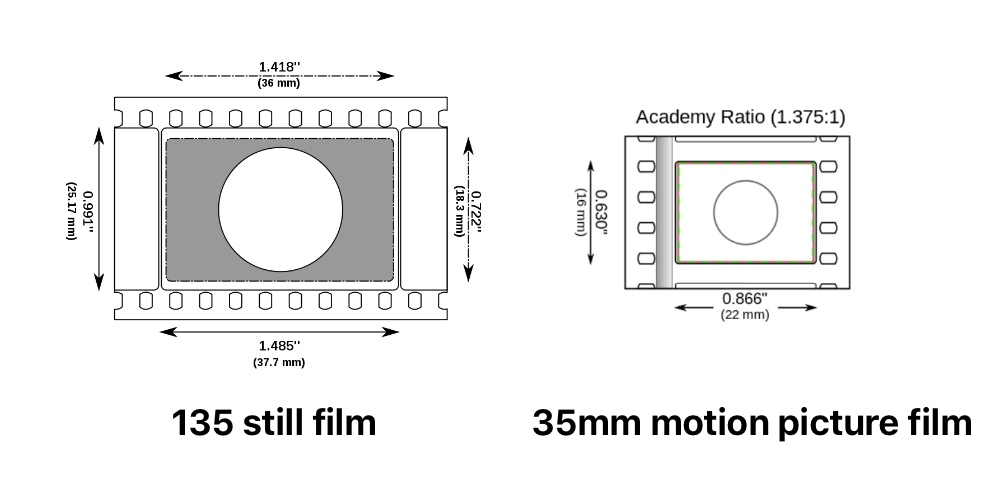 135 film versus 35mm motion picture film. Drawings courtesy of WikiMedia Commons.